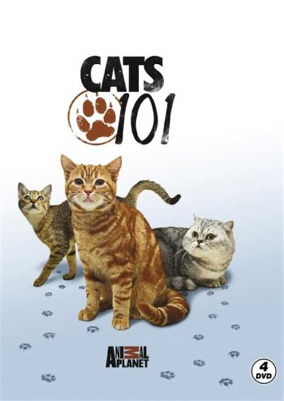 Ataklı - Discovery Channel - Cats 101