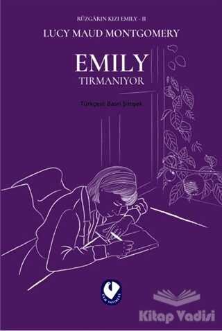 Cem Yayınevi - Emily Tırmanıyor - Rüzgarın Kızı Emily 2