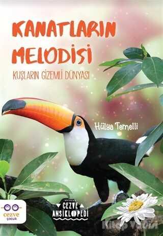 Cezve Çocuk - Kanatların Melodisi