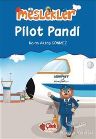 Çilek Kitaplar - Pilot Pandi