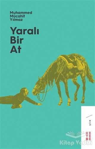 Ketebe Yayınları - Yaralı Bir At